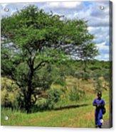 Tanzania Acrylic Print
