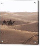 Thar Desert - India Acrylic Print