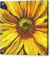 The Flower Acrylic Print by Odon Czintos