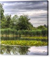 The Lily Pond  Acrylic Print