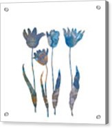 Tuilps Acrylic Print