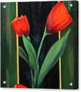 3 Tulips Acrylic Print