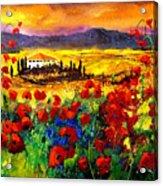 Tuscany Poppies Acrylic Print