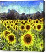 Van Gogh Sunflowers Acrylic Print
