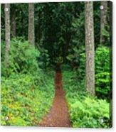 View Of Oregon Acrylic Print