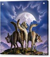 3 Wolves Mooning Acrylic Print