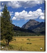 Yellowstone Vista Acrylic Print
