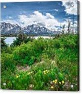 The White Pass And Yukon Route On Train Passing Through Vast Lan Acrylic Print