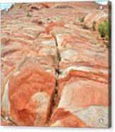 Colorful Sandstone In Valley Of Fire Acrylic Print