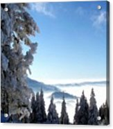 Picture Of Landscape Acrylic Print