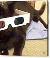3d Cat Acrylic Print