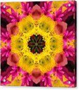 3d Pink Kaleidoscope Acrylic Print