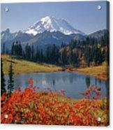 3m4824 Tipsoo Lake And Mt. Rainier H Acrylic Print