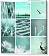 3x3 Aqua Blue Acrylic Print