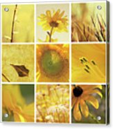 3x3 Yellow Acrylic Print