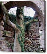 Castle Ruin Noerten-hardenberg Acrylic Print