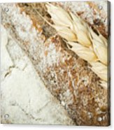 Close Up Bread And Wheat Cereal Crops Acrylic Print by Deyan Georgiev