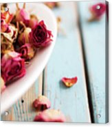 Dried Roses Acrylic Print