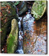 4 Faces In The Water Acrylic Print
