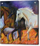 4 Horses Of The Apocalypse Acrylic Print