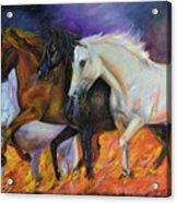 4 Horses Of The Apocalypse Acrylic Print