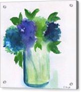 4 Hydrangeas Acrylic Print