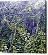 Kauai Water Fall Acrylic Print