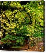 Landscape Acrylic Painting Acrylic Print