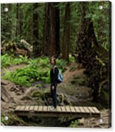 Montgomery Woods State Natural Reserve Acrylic Print