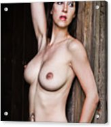 Nude Art Photography By Mary Bassett Acrylic Print