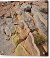 Rainbow Of Color In Valley Of Fire Acrylic Print