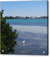 Sarasota Bay Acrylic Print