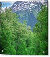 Scenic Train From Skagway To White Pass Alaska Acrylic Print