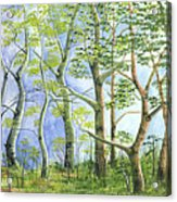 Four Seasons Acrylic Print