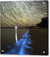 Star Trails And Bioluminescence Acrylic Print by Philip Hart