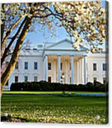 The White House Acrylic Print