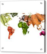 World Fruits Vegetables Map Acrylic Print