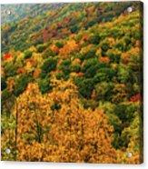 North Carolina Fall Colors Acrylic Print