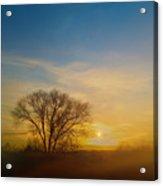 4093 Acrylic Print