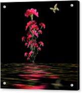 4210 Acrylic Print