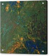43dfp Nebula Acrylic Print