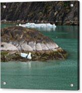Alaska_00047 Acrylic Print