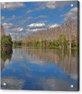 47- Everglades Serenity Acrylic Print