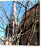 Architecture Series Acrylic Print