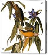 Audubon: Warbler, (1827-38) Acrylic Print by Granger