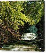 Cascadilla Gorge Falls Acrylic Print