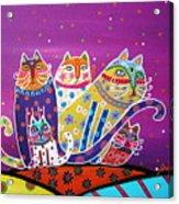 5 Cats Acrylic Print
