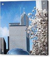 Chicago Bean Millenium Park Acrylic Print