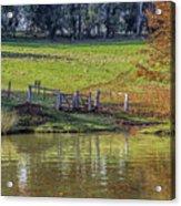 Golden Valley Tree Park Acrylic Print