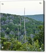 Hill Country Acrylic Print